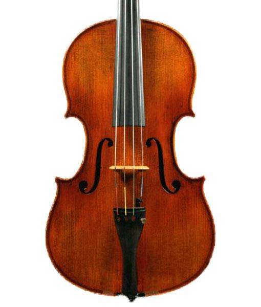 Snow SA400 Viola