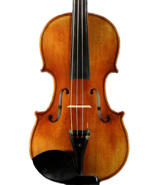 Snow Intermediate SV400 Violin Outfit